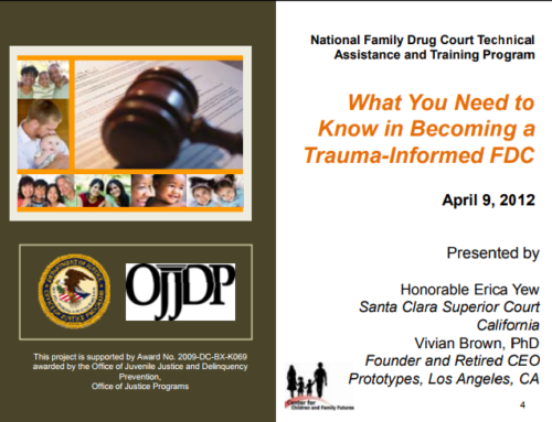 What You Need to Know in Becoming a Trauma-Informed FDC