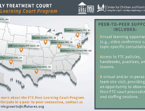 Discover the latest cohort of the FTCTraining and Technical Assistance Program'sPeerLearning Court(PLC)Program!